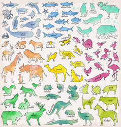 abstract line and dot animals vector image