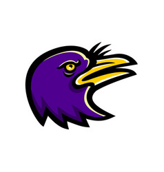 American crow head mascot vector