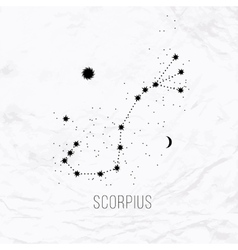 Astrology sign Scorpius on white paper background vector image