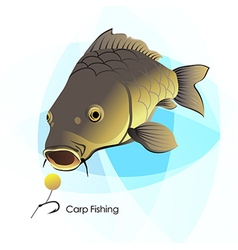Carp fishing vector