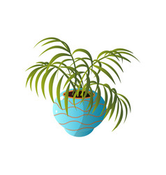 homemade cute home plant in a beautiful colorful vector image