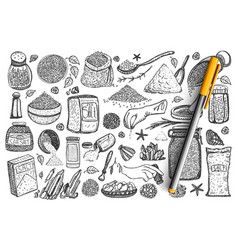 salt hand drawn doodle set vector image