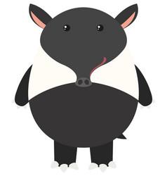 Tapir on white background vector