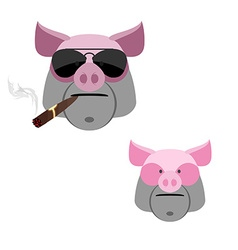Pig with a cigar scary and angry boars head on a vector