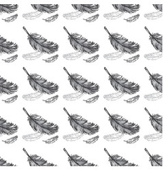 feathers seamless pattern background vector image vector image