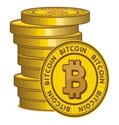 Bitcoin2 resize vector image vector image