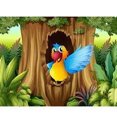 A bird in a tree hollow vector image