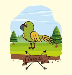 beautiful bird cartoon in forest vector image