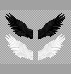black and white angel wings swans and crows vector image