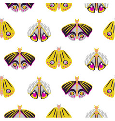 bright moth insects seamless pattern vector image