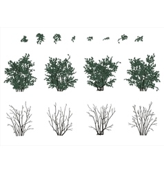 Bushes set in flat colors vector