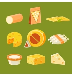 Different Types of Cheese Flat vector