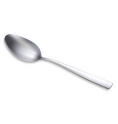 realistic metal spoon vector image