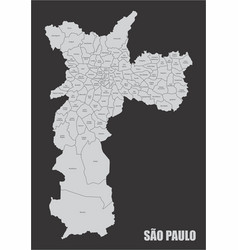 sao paulo city map vector image