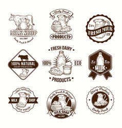 set badges stickers vector image