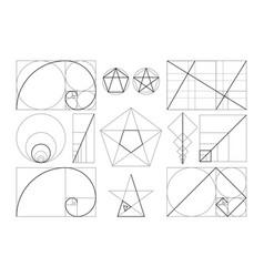 template figures in frame golden ratio vector image