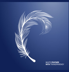 White fluffy feather quill on pink background vector