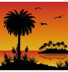 Tropical island palms flowers and birds vector image vector image