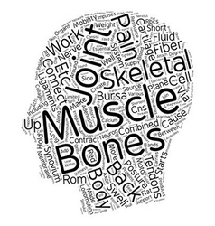 How the skeletal muscles cause back pain text vector