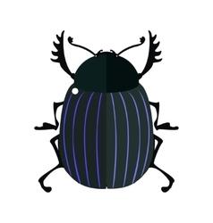 Scarab bug vector image vector image