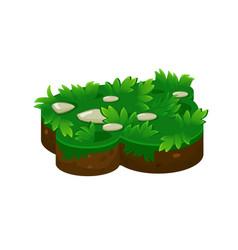 Isometric ground island platform with grass vector