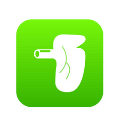 kidney icon green vector image