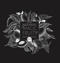 mango fruit banner template hand drawn vector image