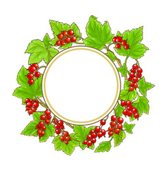 Red currant frame on white background vector
