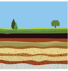 Soil formation and soil horizons vector