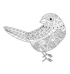 Sparrow coloring book for adults vector image