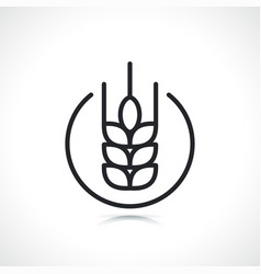 wheat thin line icon symbol vector image