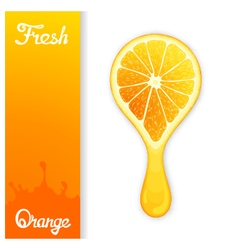 Orange crush juice vector image