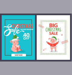 christmas sale 40 percent holiday discount pigs vector image