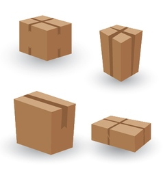 Collection box packaging Collection Box Packaging vector image
