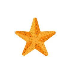 flat textured starfish star fish icon symbol vector image