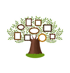 Genealogical family tree with picture frames vector