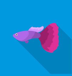 Guppy fish icon flat singe aquarium fish icon vector