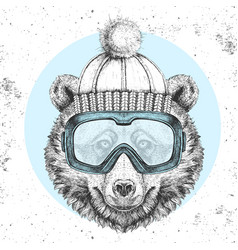 Hipster animal bear in winter hat vector