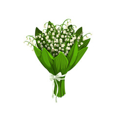 Lilies valley or may-lily flowers vector
