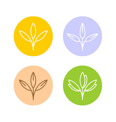oats ears or other cereal plants logo set grain vector image