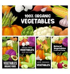 vegetables banners farm organic raw veggies vector image