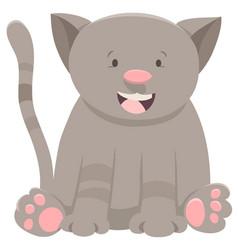 kitten or cat cartoon character vector image