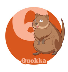 Abc cartoon quokka vector