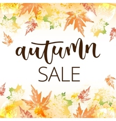 Autumn sale hand written inscription vector image