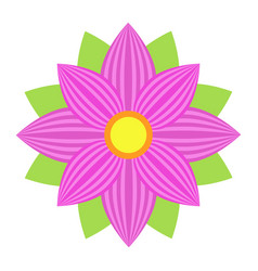 Flower astra flat icon easter and holiday vector