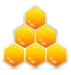 honeycomb element emblem isolated vector image