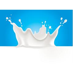 milk splash on blue background vector image