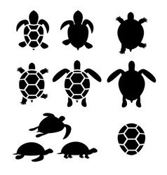Set turtle and tortoise silhouette vector