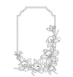 narcissus daffodils spring floral border frame vector image