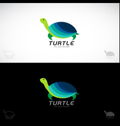 turtle design on white background and black vector image